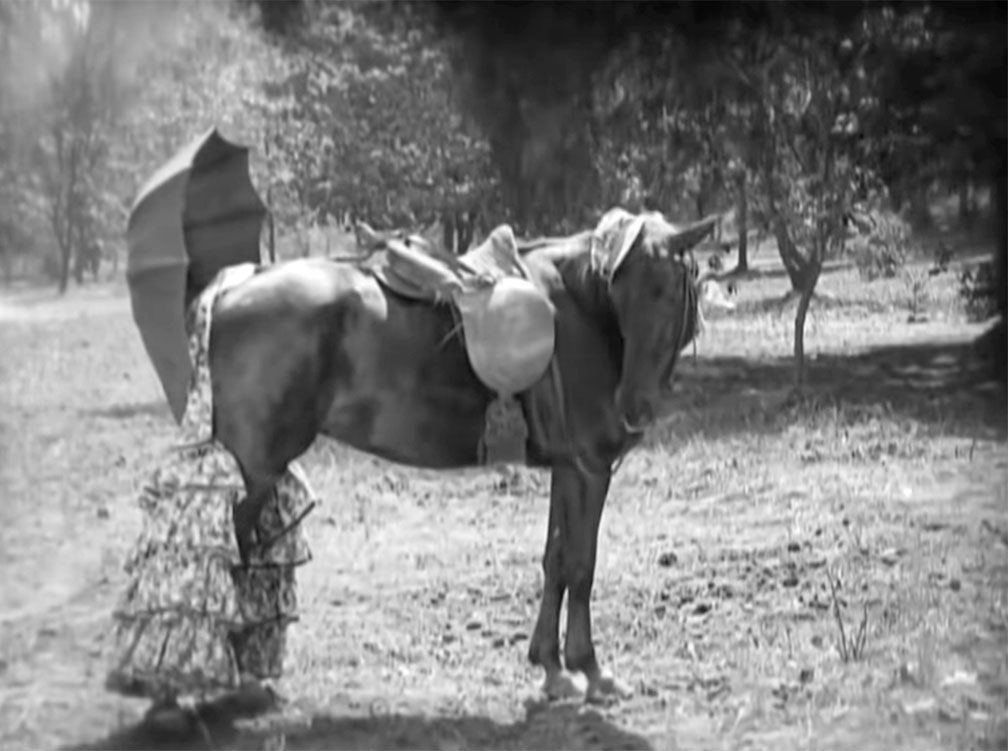 our hospitality horse buster keaton